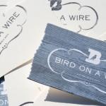 birdonawire_08
